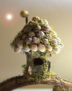 Fairy Houses - Snail Shell Fairy House Tutorial