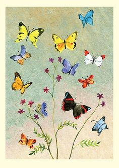 ID48 Butterflies by Anna Shuttlewood for Two Bad Mice Cards