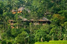 Pu Luong Retreat: A majestic off-the-beaten-path getaway in Northern Vietnam