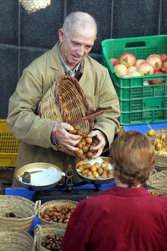 Mercadillo semanal, cada miércoles en El Campello, Alicante