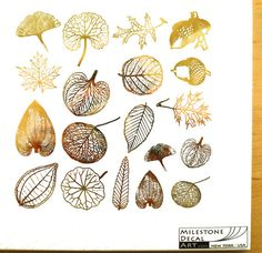 Ceramic and glass decals on sale at The Ceramic Shop. Underglaze rice paper decals, color decals, graffito transfer paper, and custom decals also available. Zentangle, Leaf Skeleton, Ceramic Shop, Collage, Small Leaf, Custom Decals, Transfer Paper, Gold Leaf, Gold Foil