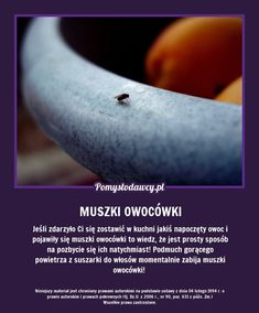 NIEZWYKŁY TRIK NA EKSPRESOWE POZBYCIE SIĘ MUSZEK OWOCÓWEK! Kitchen Organisation, In Case Of Emergency, Simple Life Hacks, Green Cleaning, Home Hacks, Good Advice, Good To Know, Home Remedies, Cleaning Hacks