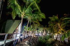 Base Backpackers Magnetic Island is located right on the beach and hosts the famous Full Moon Party. more info Brisbane To Cairns, Full Moon Party, Backpacking, Magnets, Beautiful Pictures, Fair Grounds, Base, Australia, Island