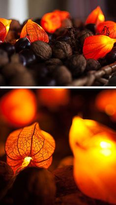 Fairy Lights with Dried Blossoms | 35 DIY Fall Decorating Ideas for the Home | Fall Craft Ideas for Adults