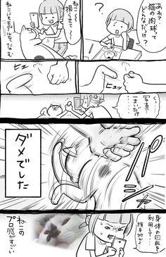 松本ひで吉 (@hidekiccan) さんの漫画 | 144作目 | ツイコミ(仮) Animal Pictures, Cute Pictures, Mammals, Birds, Manga, Comics, Cats, Funny, Animals