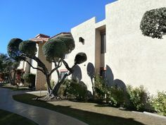 1407 North Sunrise Way 18 Palm Springs, CA, 92262 Riverside County | HUD Homes Case Number: 048-423477 | HUD Homes for Sale