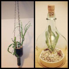 Wine bottle art. Creations by Richard Perrello. Terrarium, Terrariums, Art, Design Plants, Succulents