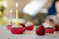 Kindergeburtstag (Mini Schoko-Cupcakes mit Erdbeer Topping)