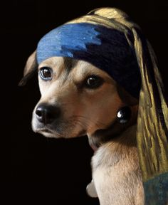 Dog with a Pearl Earring (by bublynski)