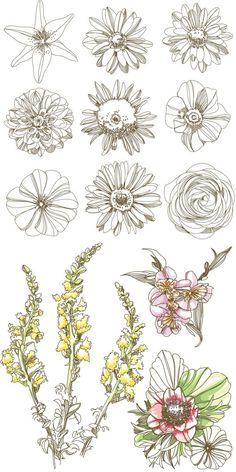 Flowers vector: Vintage Flower Tattoo, Sunflower Tattoo, Wildflower Tattoo, Simple Flower Tattoo, Daisy Flower Tattoo, Flower Outline Drawing, Sunflower Sketch