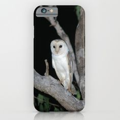 Barn Owl (Tyto alba) iPhone & iPod Case by Owl Pages   Society6