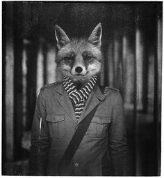 Mr. Fox by Kraft Zarcø. Neat concept. Sort of reminds me of Collin because of how he's dressed.