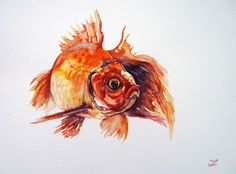 ARTFINDER: Open-eyed Goldfish by Zaira Dzhaubaeva - Original watercolor painting on paper.  Goldfish in impressionist style.  If you order the painting on March it will be sent from Russia via Express Mail...