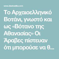 Το Αρχαιοελληνικό Βοτάνι, γνωστό και ως «Βότανο της Αθανασίας» Οι Άραβες πίστευαν ότι μπορούσε να θεραπεύσει τα πάντα. Οι Λατίνοι το θεωρούσαν το ιερό φυτό της αθανασίας και το χρησιμοποιούσαν σε τελετές. Οι Γάλλοι το ονομάζουν «ελληνικό τσάι» και το χρησιμοποιούν – όπως και οι υπόλοιποι Ευρωπαίοι – τόσο στη μαγειρική, όσο και για τις …