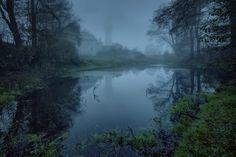 Foggy Day by Lukasz Malkiewicz