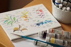 Such a pretty watercolor color chart. Watercolour Tutorials, Watercolor Techniques, Art Techniques, Art And Illustration, Watercolor Illustration, Illustrations Posters, Watercolor And Ink, Watercolor Paintings, Watercolors