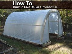 How To Build A $50 Dollar Greenhouse