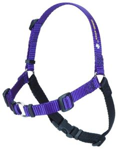 SENSEation NoPull Dog Harness  Purple Small ** Read more reviews of the product by visiting the link on the image.Note:It is affiliate link to Amazon. #DogsHarness