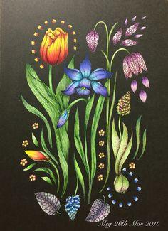 Tulip, daffodil & fritillaria meleagris #blomstermandala #maria_trolle