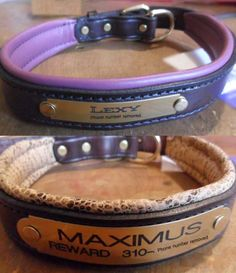 PADDED LEATHER DOG COLLARS & MATCHING LEASHES  With Engraved Nameplate.  http://www.trickpuppy.com/collars#leather