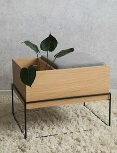 Natural Oak Storage Bench With Cushion at Rose & Grey