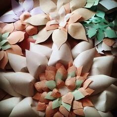Giant paper flowers (Meixner EGYMI)