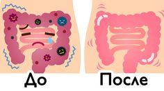 Очищение толстой кишки — хороший способ, чтобы вывести токсины из организма и восстановить пищеварительную систему. В предыдущих статьях мы много писали о разных способах очистки кишечника, но этот способ, пожалуй, самый простой способ очистки прямой кишки, когда вам нужно сделать это быстро, но качественно. ЭТО СРЕДСТВО СОСТОИТ ВСЕГО ИЗ 2 ИНГРЕДИЕНТОВ И ОЧИЩАЕТ ВАШ КИШЕЧНИК …