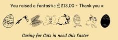 Cat Call Online Easter Shop – Closed – A Big THANK YOU | Cat Call UK Love You, Easter, Cats, Fun, Shopping, Gatos, Je T'aime, I Love You, Kitty