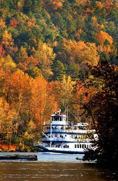 Chattanooga Fall Color Cruise. If you've never been to Chatt in the fall, you are missing a gorgeous retreat in the making.