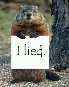 Punxsutawney Phil Fesses up.Here's hoping ;}