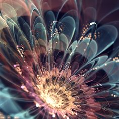 """reretlet:  信じられないほど美しい!フラクタルアートな花 – Fractal Flowers - | STYLE4 Design  """