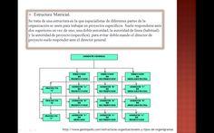 23 Mejores Imágenes De Estructuras Organizativas
