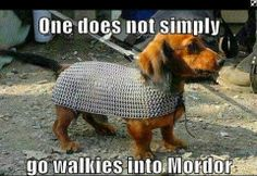 funny lord of the rings pictures | Lord of the Rings Funny Humor