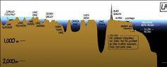 World Oceans Day was this week, and to celebrate, we're showing you all the stuff beneath the waves. People sometimes forget that oceans contain a lot more than the water you see just beneath the surface. The depths below the ocean's surface...