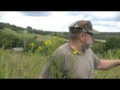 Naturalne leki - YouTube Survival, Youtube, Historia, Dish, Lawn And Garden, Youtubers, Youtube Movies