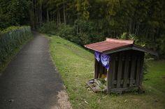 小さな祠(A small shrine)