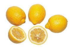 How to grow lemon plants from lemon seeds