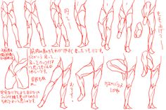 Legs ✤ || CHARACTER DESIGN REFERENCES | キャラクターデザイン • Find more at https://www.facebook.com/CharacterDesignReferences if you're looking for: #lineart #art #character #design #illustration #expressions #best #animation #drawing #archive #library #reference #anatomy #traditional #sketch #development #artist #pose #settei #gestures #how #to #tutorial #comics #conceptart #modelsheet #cartoon || ✤