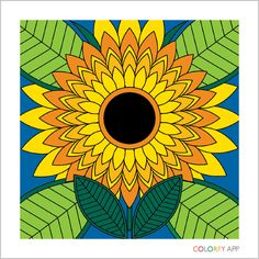 My sunflower #colorfy