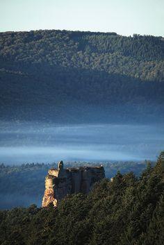 Au plein coeur des forêts des Vosges et au dessus des nuages...