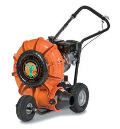 24 Best Billy goat blowers images in 2018 | Goat, Goats, Lawn edger