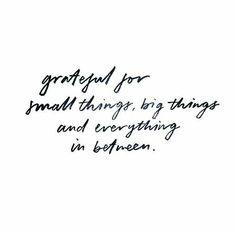 Grata pelas pequenas coisas, grandes coisas e todas as coisas entre.