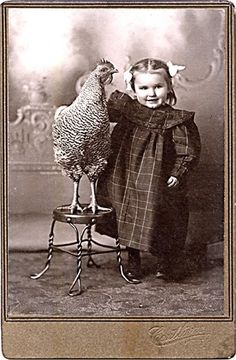 Nothing so dear as a little girl and her chook ♥ Vintage Photographs, Antique Photos, Rodin, Funny Vintage Pictures, Old Pictures, Vintage Images, Old Photos, Chicken Pictures, Vintage Cabinet
