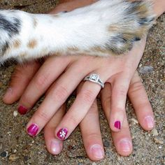 Adorable: Take a photo of your new engagement ring with your puppy or kitten's paw!