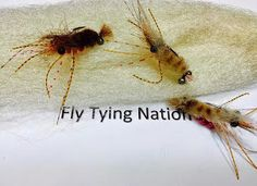 Fly Tying Nation: Tying a Fighting Mantis