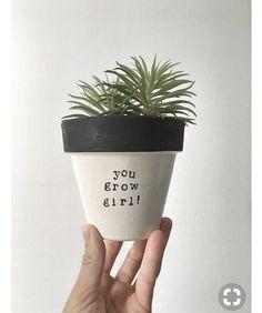 59 Super Ideas For Succulent Diy Gifts Flower Pots Succulent Centerpieces, Succulent Arrangements, Succulent Terrarium, Succulents Garden, Planting Flowers, Indoor Succulents, Colorful Succulents, Succulent Care, Mini Plantas
