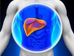 Levern är ett viktigt organ med många viktiga funktioner och därför är det fundamentalt att ta hand om den. Det kan du åstadkomma med en leveravgiftning.