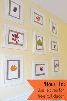 Easy fall decor using leaves!