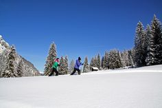 Snowshoe hiking in South Tyrol, winter holidays and winter sports in South Tyrol