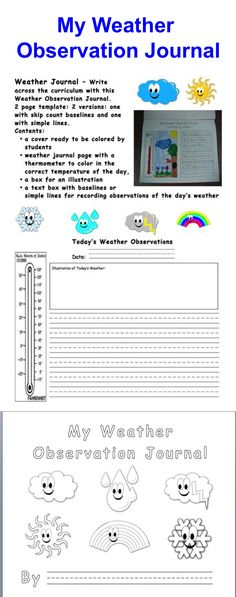 This is a great idea for students to keep a weather observation journal throughout the entire unit and then at the end reflect about the different types of weather we saw throughout. Primary Science, Science Curriculum, Science Classroom, Science Lessons, Teaching Science, Science For Kids, Classroom Ideas, Weather Graph, Weather Data